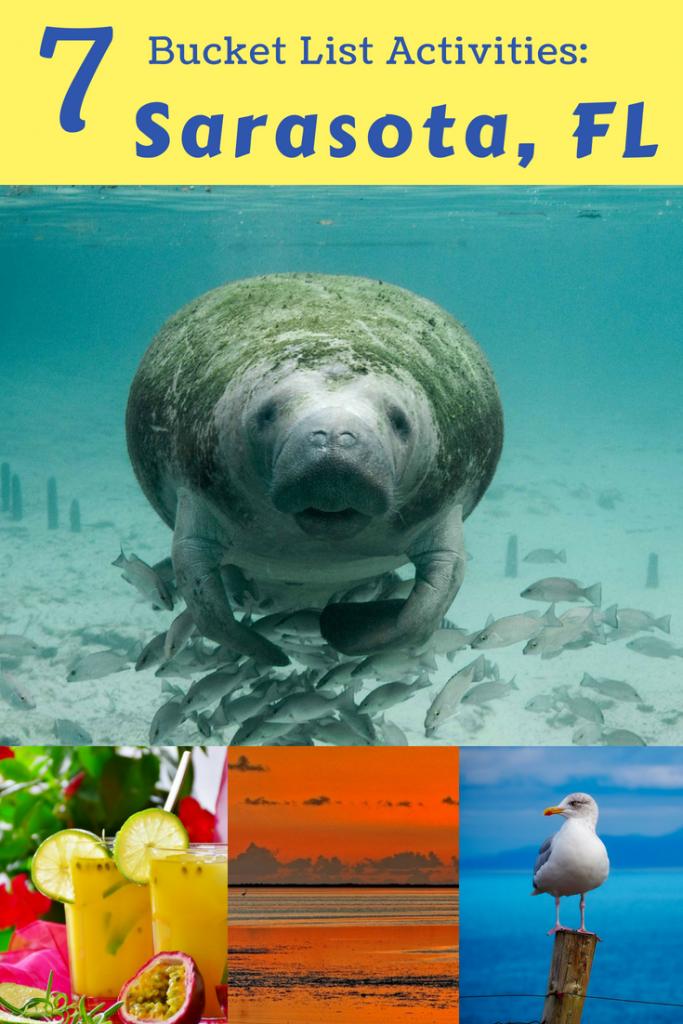 Discover epic bucket list activities in Sarasota, Florida! #sarasota #florida #travel #manatee #skydive #beach
