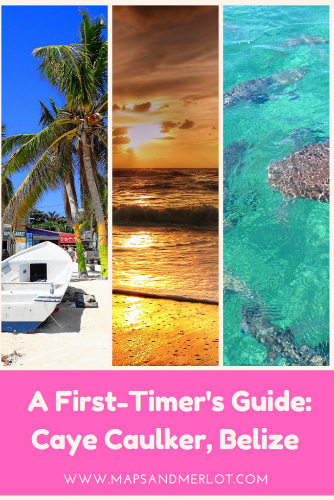 Discover the top 10 things to do in Caye Caulker, Belize! #cayecaulker #belize #travelbelize #centralamerica #island #beach #sharkrayalley