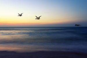 Lavallette, NJ - sunrise on Lavallette Beach